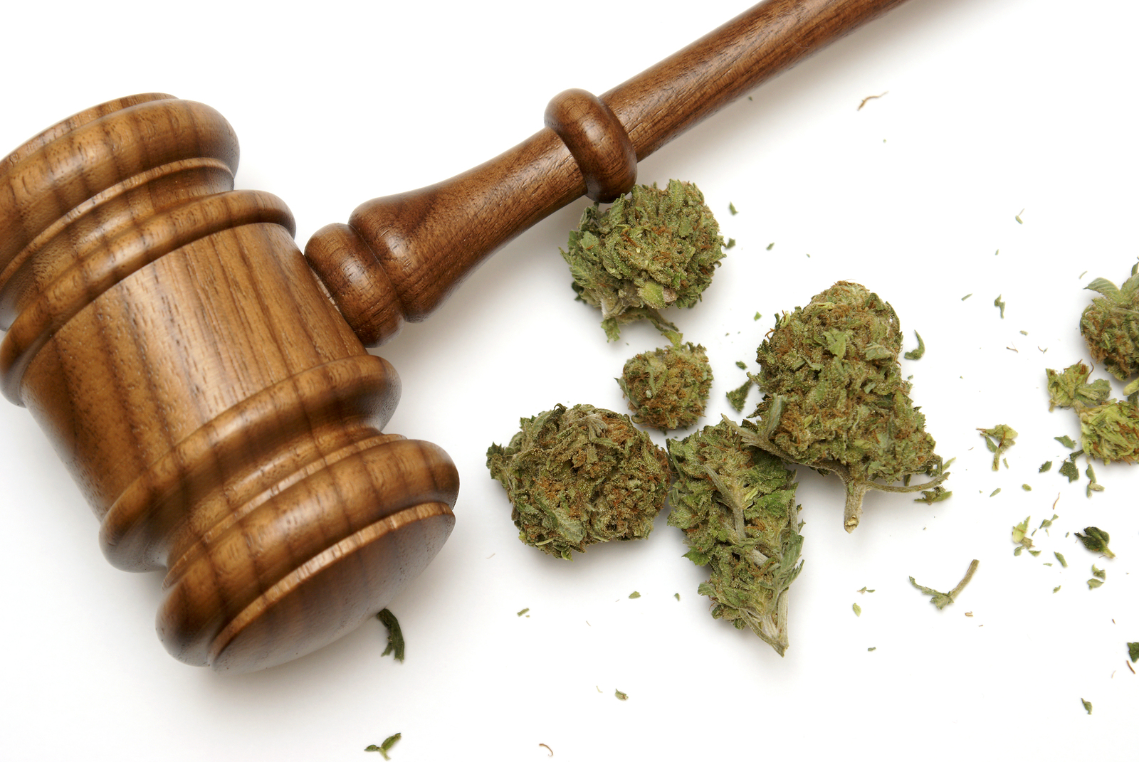 Marijuana Gavel - The Truth Behind 3 Marijuana Myths