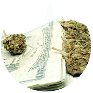 the cost of marijuana - Massachusetts Medical Marijuana Guide