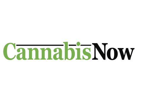 cannabisNow logo - In the News